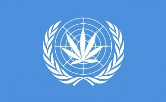 UN-Cannabis
