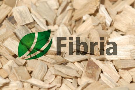 17 fibria